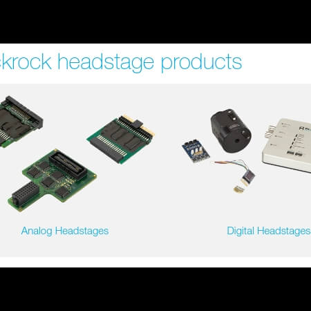 Analog and Digital Headstages