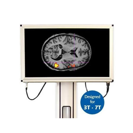 BOLDSCREEN 32 LCD FOR FMRI