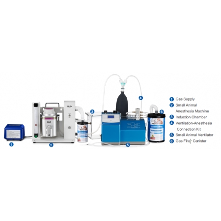 Combination Solutions of Ventilator to Anesthesia System