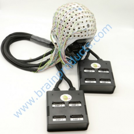 EEG DC 256 Channels - EEG DC HD, High Density EEG recordings