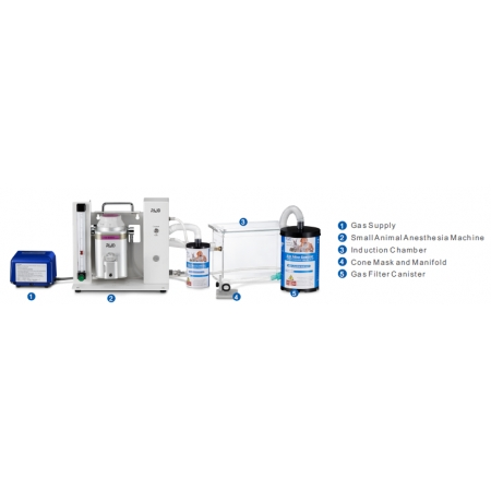 Multi-function Anesthesia Solutions (Cone Masks)