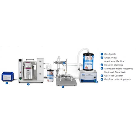 Stereotaxic Anesthesia Solutions (Nosecone Masks)
